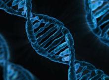 genom, adn